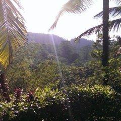 Отель Villa 4 Sinharaja фото 4