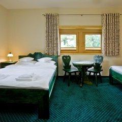 Отель Pensjonat Zakopianski Dwór 3* Стандартный номер с различными типами кроватей фото 9