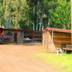 Medusa Camping Турция, Патара - отзывы, цены и фото номеров - забронировать отель Medusa Camping онлайн парковка