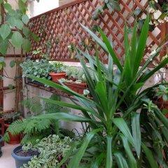 Гостиница AdlerOk Guest House фото 2