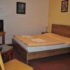 Hotel Svornost 3* Стандартный номер с двуспальной кроватью фото 5