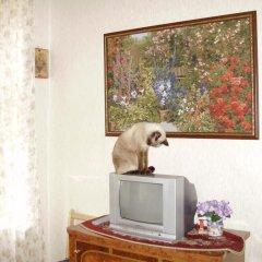 Отель Miliy Dom y Petropavlovki Санкт-Петербург с домашними животными