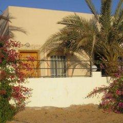 Darna Village Beach Hostel фото 13