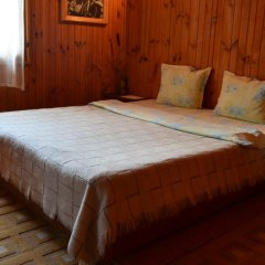 Отель Zlatniyat Telets Guest Rooms 2* Стандартный номер с различными типами кроватей