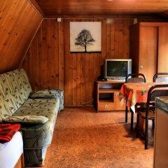 Отель Camping Pod Krokwia Польша, Закопане - отзывы, цены и фото номеров - забронировать отель Camping Pod Krokwia онлайн развлечения