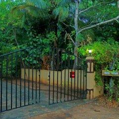 Отель Heina Nature Resort & Yala Safari 2* Шале с различными типами кроватей фото 35
