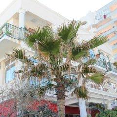 Отель Ani Албания, Дуррес - отзывы, цены и фото номеров - забронировать отель Ani онлайн
