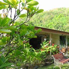 Pension Te Miti - Hostel Пунаауиа фото 16