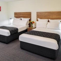 Cambridge Hotel Sydney комната для гостей фото 3