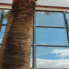 Отель Palma комната для гостей фото 2