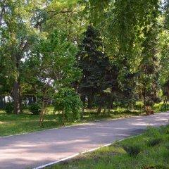 Гостиница Zeleny Kampus Украина, Одесса - отзывы, цены и фото номеров - забронировать гостиницу Zeleny Kampus онлайн фото 8