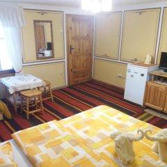 Отель Guest House Bashtina Striaha 2* Стандартный номер с различными типами кроватей фото 3