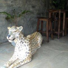 Отель Leopard Den фото 3