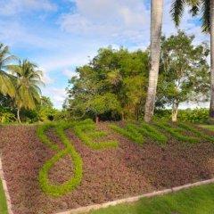 Отель Jewel Paradise Cove Beach Resort & Spa - Curio Collection by Hilton фото 9