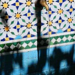Отель Le Jardin Des Biehn Марокко, Фес - отзывы, цены и фото номеров - забронировать отель Le Jardin Des Biehn онлайн фото 19