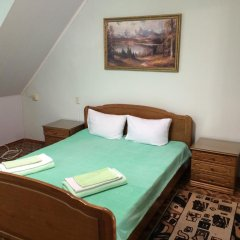 Гостиница Руслан Стандартный номер с двуспальной кроватью фото 2