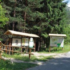 Отель The Stone Villa Болгария, Боровец - отзывы, цены и фото номеров - забронировать отель The Stone Villa онлайн детские мероприятия