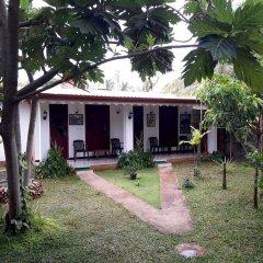 Sylvester Villa Hostel Negombo Номер категории Эконом с различными типами кроватей фото 3