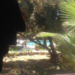 Отель Riad and Villa Emy Les Une Nuits Марокко, Марракеш - отзывы, цены и фото номеров - забронировать отель Riad and Villa Emy Les Une Nuits онлайн приотельная территория фото 2