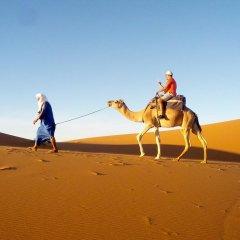 Отель Kasbah Le Berger, Au Bonheur des Dunes Марокко, Мерзуга - отзывы, цены и фото номеров - забронировать отель Kasbah Le Berger, Au Bonheur des Dunes онлайн спортивное сооружение
