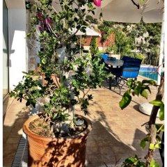 Villa Valo Турция, Калкан - отзывы, цены и фото номеров - забронировать отель Villa Valo онлайн фото 4