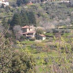 Отель Agriturismo Luce Реггелло фото 2