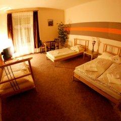 Отель Pokoje Goscinne Isabel Стандартный номер с различными типами кроватей фото 6