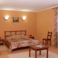 Гостиница Альпийский двор 3* Стандартный номер с различными типами кроватей фото 13