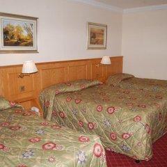 Viking Hotel 3* Стандартный номер фото 4