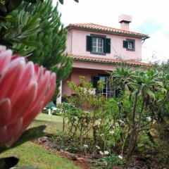 Отель Quinta Santo Antonio Da Serra Машику фото 15