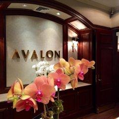 Avalon Hotel 4* Стандартный семейный номер с двуспальной кроватью фото 4