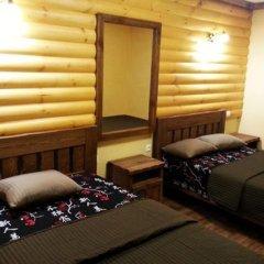 Гостиница Russkiy dvor 3* Стандартный номер с различными типами кроватей фото 3