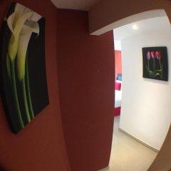 Отель Suites Malecon Cancun Стандартный номер с различными типами кроватей фото 8