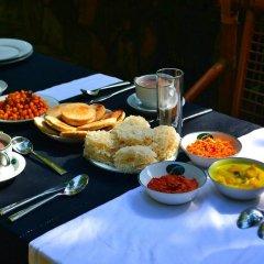 Отель Ella Jungle Resort Шри-Ланка, Бандаравела - отзывы, цены и фото номеров - забронировать отель Ella Jungle Resort онлайн в номере