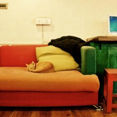 goStops Delhi (Stops Hostel Delhi) комната для гостей фото 3