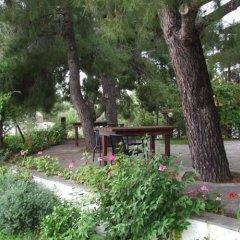 Отель Para Thin Alos Греция, Ситония - отзывы, цены и фото номеров - забронировать отель Para Thin Alos онлайн фото 27