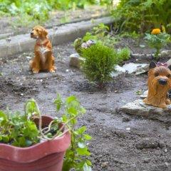 Гостиница Chernomorskiy Kovcheg с домашними животными