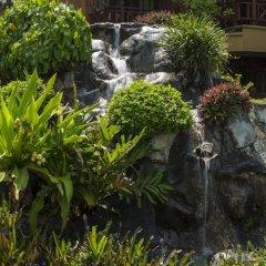 Отель Royal Palms Beach Hotel Шри-Ланка, Калутара - отзывы, цены и фото номеров - забронировать отель Royal Palms Beach Hotel онлайн фото 10