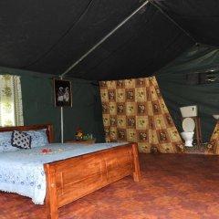 Отель Yala Peocok Camping Номер Делюкс с различными типами кроватей фото 13