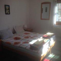 Отель Borimechkovata Kashta 2* Стандартный номер с различными типами кроватей фото 4