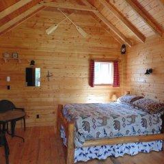 Отель Timberwolf Lodge-B&B удобства в номере