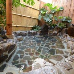 Отель Mochiduki Ryokan Минамиогуни бассейн