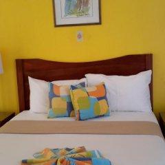 Hibiscus Lodge Hotel 3* Номер Делюкс с различными типами кроватей фото 2