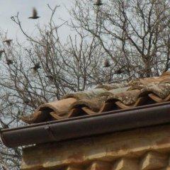 Отель Agriturismo Il Gelso Antico Реканати приотельная территория фото 2