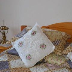Гостиница Алексеевская усадьба 3* Стандартный номер с различными типами кроватей фото 2