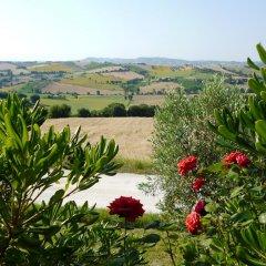 Отель L'Erbaiuola Италия, Реканати - отзывы, цены и фото номеров - забронировать отель L'Erbaiuola онлайн фото 3