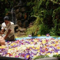 Отель Aida Шри-Ланка, Бентота - отзывы, цены и фото номеров - забронировать отель Aida онлайн бассейн фото 2