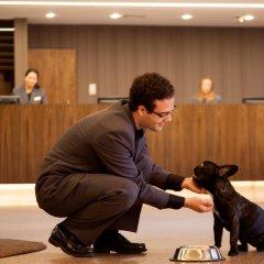 Отель Ramada by Wyndham Lisbon с домашними животными