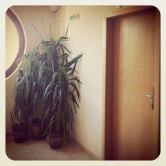 Hotel Avenue 2* Апартаменты фото 13
