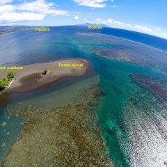 Отель Guest Beach Bungalow Tahiti Французская Полинезия, Махина - отзывы, цены и фото номеров - забронировать отель Guest Beach Bungalow Tahiti онлайн приотельная территория фото 2